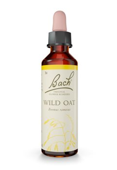 Bach Wild Oat  - Click to view a larger image